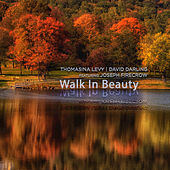 Walk in Beauty van Thomasina Levy