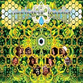 Psychedelic Traveller by Various Artists