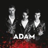 Adam by adam