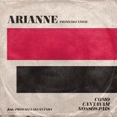 Primeiro Amor (Quero Voltar) (Ao Vivo) de Arianne