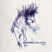 Bosconi Stallions Vol.2 - 10 Years Of Bosconi Records by Various Artists