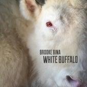 White Buffalo by Brooke Bina