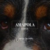 Amapola (Cover) van Juancho Gutiérrez
