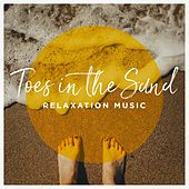 Toes in the Sand Relaxation Music by Various Artists