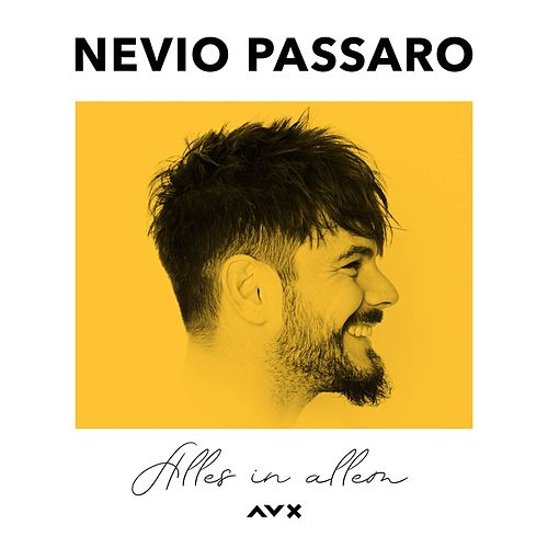 Alles in allem by Nevio Passaro