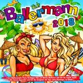 Ballermann 2018 - I love Mallocastyle Party Schlager Hits auf Mama Mallorca und der DJ macht lauda (Wir feiern legendär und für die Ewigkeit mit Ingo ohne Flamingo, Isi Glück) von Various Artists