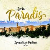 Speranta si Prietenii - Spre Paradis, Vol. 19 by Speranța și prietenii