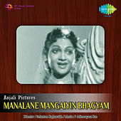 Manalane Mangaiyin Bhagyam (Original Motion Picture Soundtrack) de Various Artists