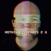 Nothing Compares 2 U van Radical Face