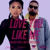 Love You Like Me (Remix) [feat. Konshens] von Che'Nelle