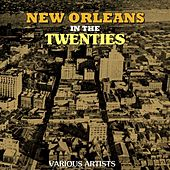 New Orleans In The Twenties by Various Artists
