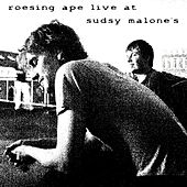 Live at Sudsy Malone's by Roesing Ape