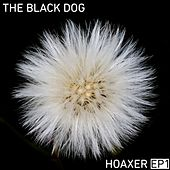 Hoaxer EP 1 by The Black Dog