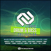 Liquid Drum & Bass Collection - EP von Various Artists