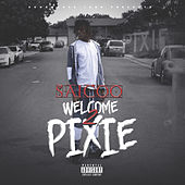 Welcome 2 Pixie by Various Artists