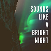 Sounds Like A Bright Night van Various