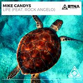 Life by Mike Candys