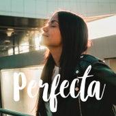 Perfecta de Laura Naranjo