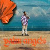 Palm Angels de Remi