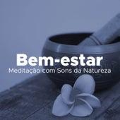 Bem-estar #20: uma Coleção do Melhor da Música para Meditação com Sons da Natureza by Lullabies for Deep Meditation