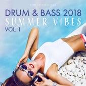 Drum & Bass 2018 (Summer Vibes) di Various Artists