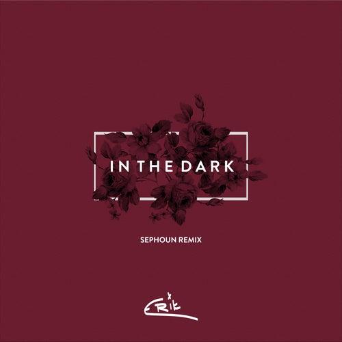 In the Dark (Sephoun Remix) de Erik