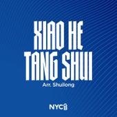 Xiao He Tang Shui (Flowing Creek) by National Youth Choir of Great Britain