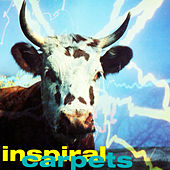 She Comes in the Fall di Inspiral Carpets