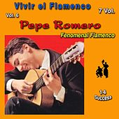 Vivir el Flamenco, Vol. 6 (Fenomenal Flamenco) (14 Sucess) by Pepe Romero