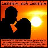 Liebelein, ach Liebelein von Various Artists