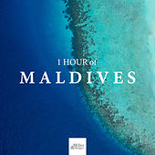 1 HOUR of Maldives: the Best Relaxing Asian Music de Nature Sound Collection