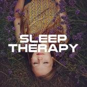 Sleep Therapy: 20 Ways to Fall Asleep That Actually Work (2018) de Buddha Sounds