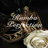 Rumba Perfection by Various Artists