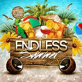 Endless Summer 2018 by Various Artists