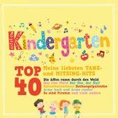 Kindergarten Top 40 (Meine liebsten Tanz- Und Mitsing-Hits) von Various Artists