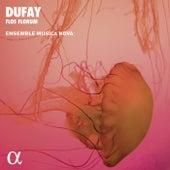Dufay: Flos Florum. Motets, Hymns, Antiphons (Alpha Collection) de Ensemble Musica Nova
