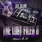 The Lost Files 2 (Call It What You Want Bruh) by Joe Blow