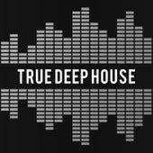 True Deep House van Various