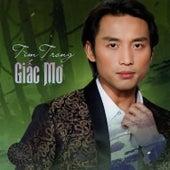 Tim Trong Giac Mo van Various