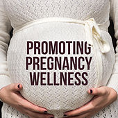 Promoting Pregnancy Wellness: 22 Ways to De-stress When You're Pregnant von Lullabies for Deep Meditation