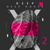 Deep. Deep House, Vol. 2 van Various