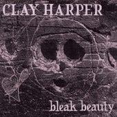 Bleak Beauty by Clay Harper