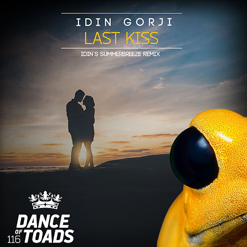 Last Kiss Remix by Idin Gorji