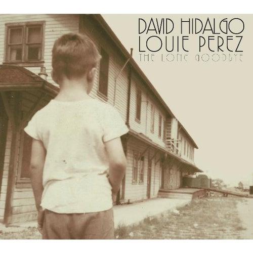 The Long Goodbye by David Hidalgo