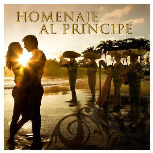 Homenaja al Principe by Mariachi Sol De Mexico