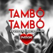 En Vivo en Planeta Pasión de Tambó Tambó