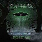 A Night in the Forest by Luntara