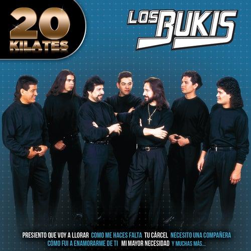 20 Kilates by Los Bukis