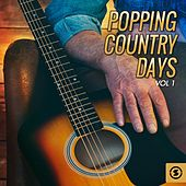Popping Country Days, Vol. 1 de Various Artists