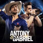 Bonito pra Você (Ao Vivo) de Antony & Gabriel